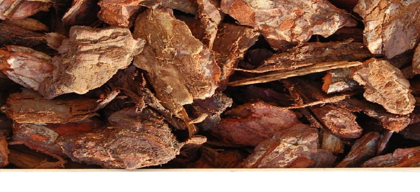 Read more about our bark products